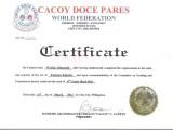 Nominacja na stopień 4th degree blackbelt w Doce Pares.